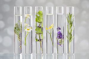 Aceites Esenciales Natural Idéntico