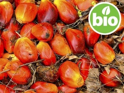 Aceite de Palma Orgánico Desodorizado BIO