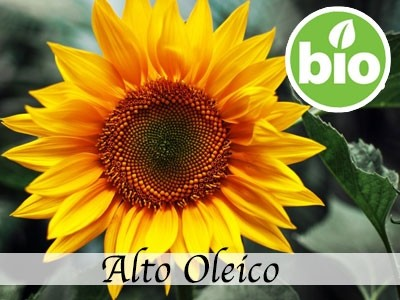 Aceite de Girasol Alto Oleico RBDW BIO
