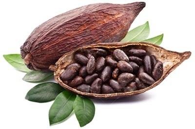 Aroma de Cacao Natural