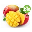 Manteca de Mango Desodorizada BIO