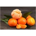 Aceite Esencial de Mandarina Clementina