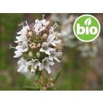 Aceite Esencial de Tomillo Limonero BIO / Tomillo Basto