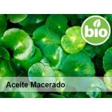 Aceite de Centella Asiática BIO