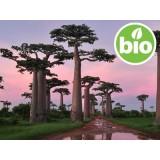 Aceite de Baobab 1ª presión BIO
