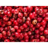 Aceite Esencial de Pimienta Rosa