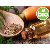 Aceite Esencial de Zanahoria BIO - Qt. β Bisaboleno