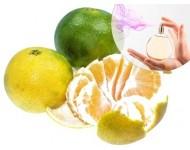 Esencia de Mandarina Verde