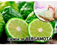 Esencia de Bergamota