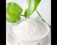Palmitato de Ascorbilo - Vitamina C Estable