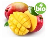Manteca de Mango BIO