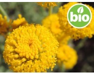 Aceite Esencial de Manzanilla Santolina BIO