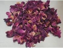 Pétalos de Rosa Centifolia