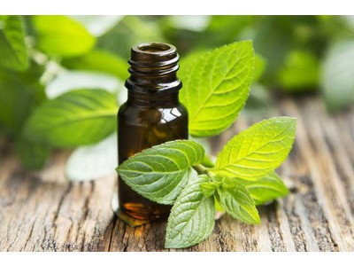 Aceite Esencial de Menta Piperita Suprema BIO
