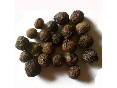 Aceite Esencial de Bayas de Laurel - Sugandha Kokila